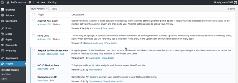 Things To Do After Installing WordPress: WordPress Dashboard Plugins page