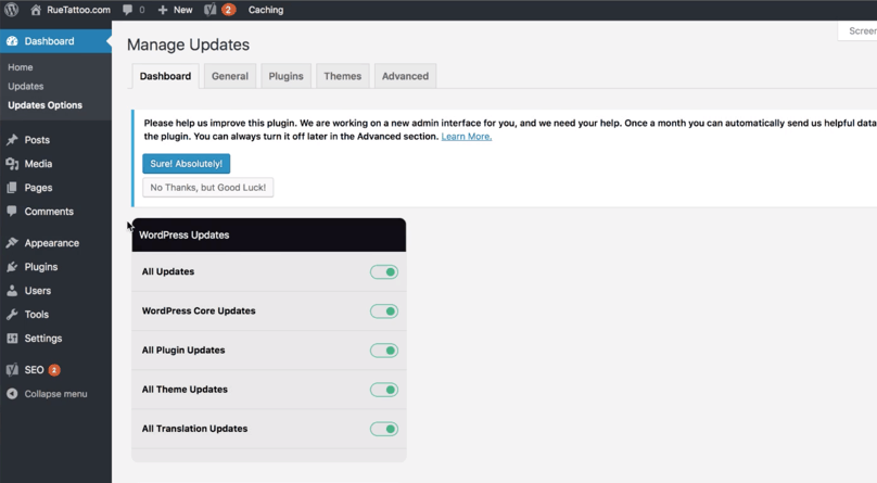 WordPress Dashboard Easy Updates Manager Dashboard