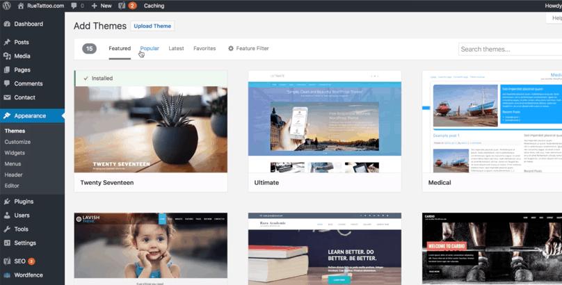 WordPress Dashboard, Appearance, Themes