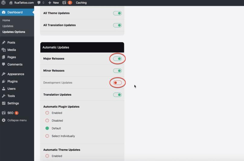 WordPress Dashboard, Easy Updates Manager Dashboard, Automatic Updates