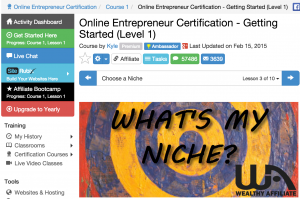 how to pick a niche training