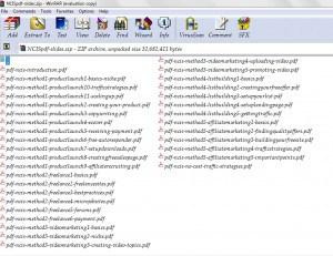 PDF transcripts