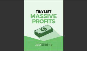 Tiny List Massive Profits Featured image