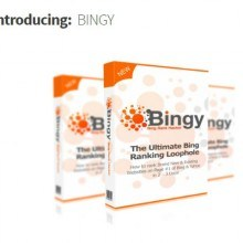 Bingy Featured Image