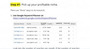 Pick your profitable niche