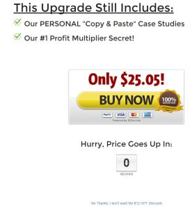 Rapid Traffic Masterclass Upsell 2