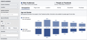 dropshipping niche research using Facebook's Audience Insights tool