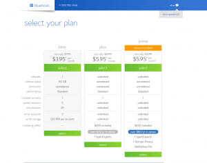 Bluehost Pricing Plans 2017
