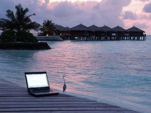 laptop on a beach with a bird