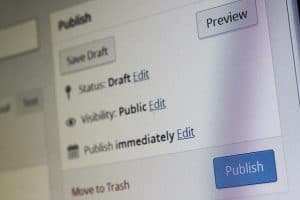 publish wordpress