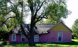 purple, lopsided house with tree in the foreground