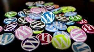 colorful button pins with the WordPress logo