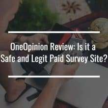 OneOpinion Review featured image